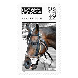 Saratoga Stamp Gallery