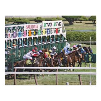 Saratoga Turf Racing Postcard