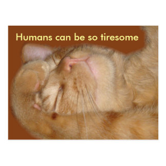 Sarcastic Cat - Humans Can Be So Tiresome Postcard