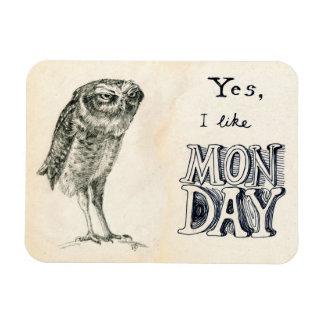 Sarcastic owl magnet