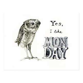 Sarcastic owl postcard