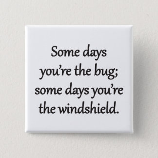Sarcastic Zen Phrase - The Bug And The Windshield Pinback Button
