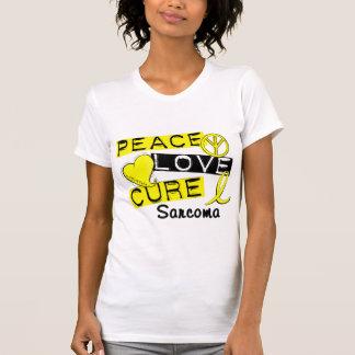 Sarcoma de la curación del amor de la paz playeras