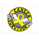 Sarcoma del superviviente 14 postales