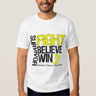 Sarcoma Survivor Fight Believe Win Motto Shirt