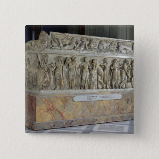 Sarcophagus with frieze of the Nine Muses Pinback Button