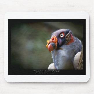 Sarcoramphus papa - King Vulture 03 Mouse Pad