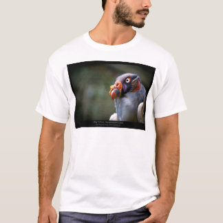 Sarcoramphus papa - King Vulture 03 T-Shirt
