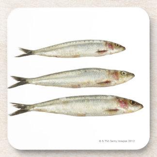 Sardinas (sardinas) 2 posavasos de bebida