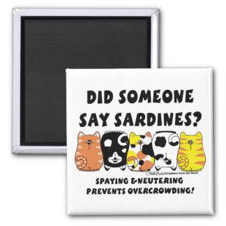 Sardine Cats Magnet