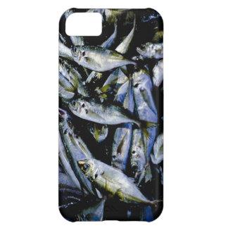 Sardines iPhone 5C Cases