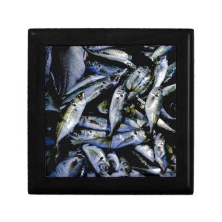 Sardines Gift Box