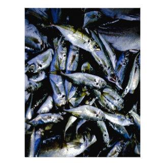 Sardines Letterhead Template
