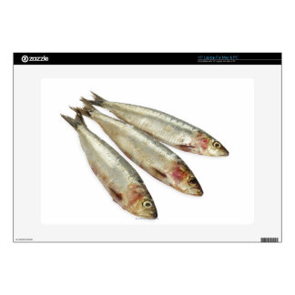 """Sardines (Pilchards) Decal For 15"""" Laptop"""