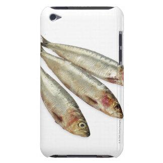 Sardines (Pilchards) iPod Case-Mate Case