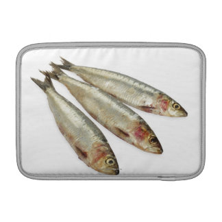 Sardines (Pilchards) MacBook Air Sleeve