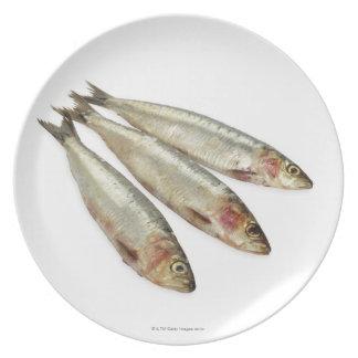 Sardines (Pilchards) Melamine Plate