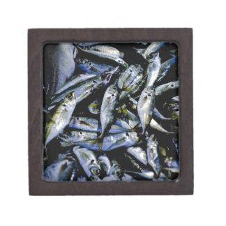 Sardines Premium Jewelry Box