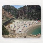 Sardinian beach mouse pads