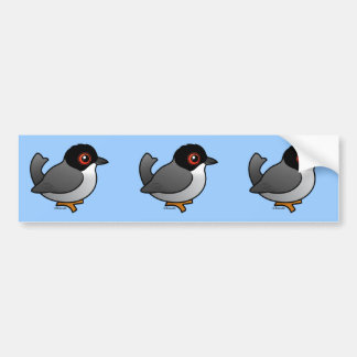 Sardinian Warbler Bumper Sticker