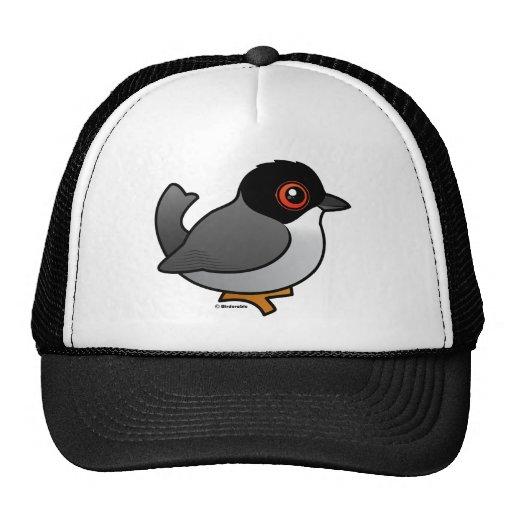 Sardinian Warbler Mesh Hat
