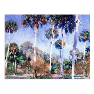 Sargent - palmas, una pintura de John Singer Tarjetas Postales