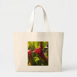 Sarracenia bag