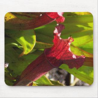 Sarracenia mousepad