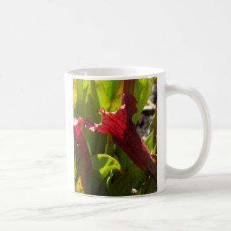 Sarracenia mug