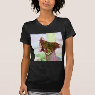 Sarracenia Plant T Shirts