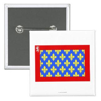 Sarthe flag pin