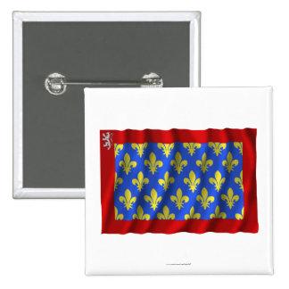 Sarthe waving flag pinback buttons