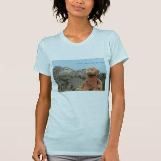 Saru the monkey tee shirts
