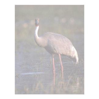 Sarus Crane Letterhead