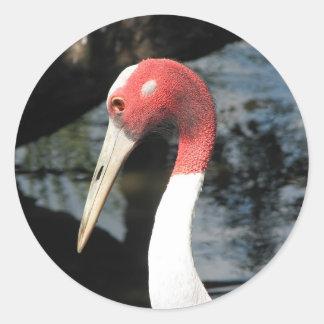 Sarus Crane Sticker