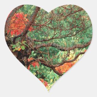 Sasafrás del otoño en Hoyt Portland Oregon Pegatina En Forma De Corazón
