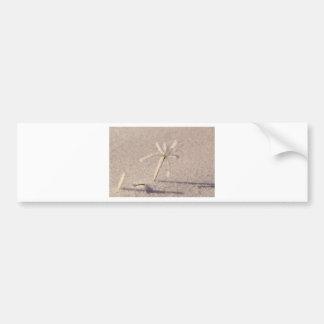 Saskatchewan Palm Tree Bumper Sticker