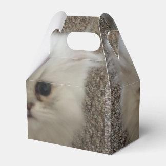 Sasquach mullido que mira el gatito con la caja para regalo de boda