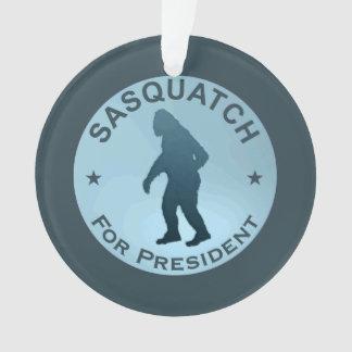 Sasquatch For President