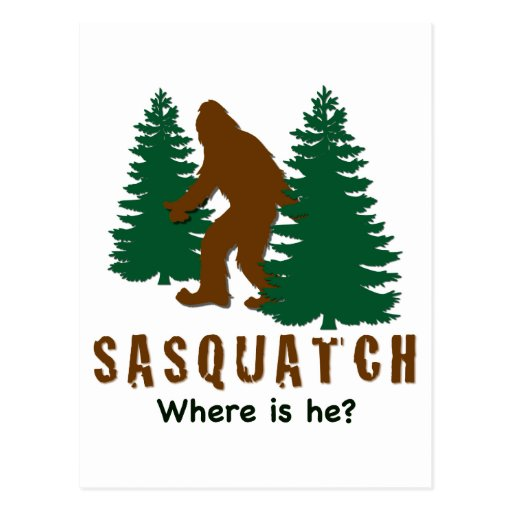 Sasquatch - Where is he? Postcard