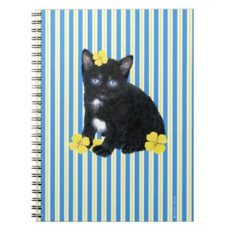 """Sassa"" Notebook"