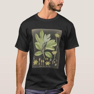 sassafras mda T-Shirt