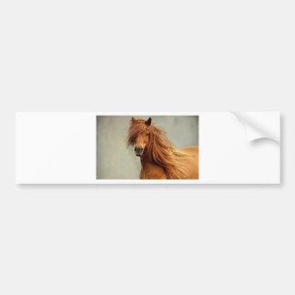 Sassy Horse Bumper Sticker