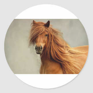 Sassy Horse Classic Round Sticker
