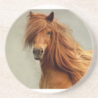 Sassy Horse Coaster