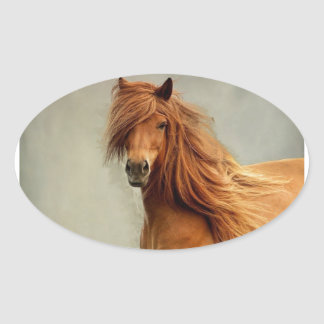 Sassy Horse Oval Sticker