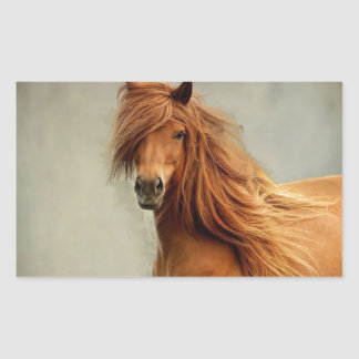 Sassy Horse Rectangular Sticker