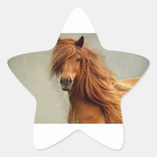 Sassy Horse Star Sticker