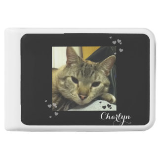Sassy Sleepy Siamese Tabby Cat Hearts Power Bank