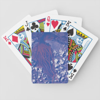 Satellite Image of Earth 2 Bicycle Playing Cards
